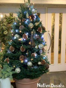 クラブラウンジエントランスのクリスマスツリー 高さ2.5m