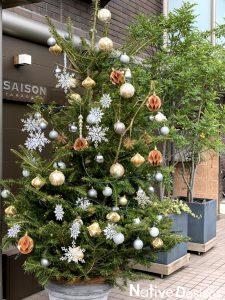 クリスマスツリー 二子玉川 高さ2.5m